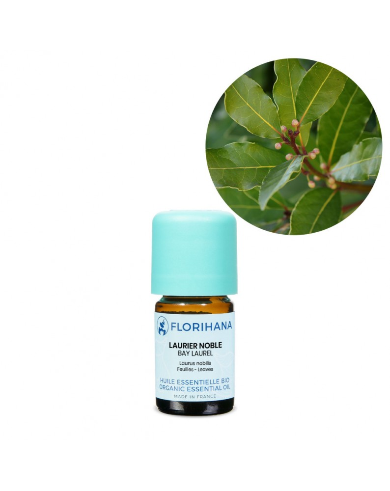 Bay Laurel Essential Oil BIO (Laurus Nobilis) - FLE045