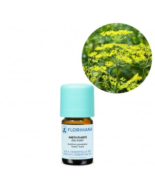 Dill Plant Essential Oil ΒΙΟ (Anethum Graveolens) - FLE006