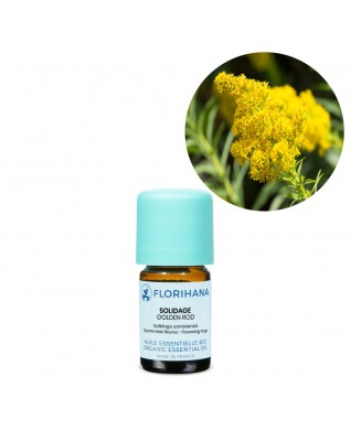 Golden Rod Essential Oil BIO (Solidago Canadensis) - FLE152
