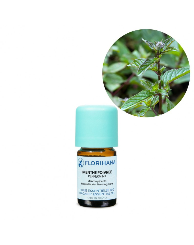 Peppermint Essential Oil BIO (Mentha Piperita) - FLE058