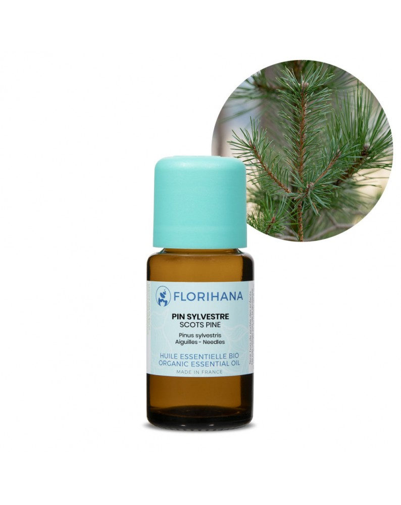 Pine Scots Essential Oil BIO (Pinus Sylvestris) - FLE071