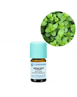 Spearmint Essential Oil BIO (Mentha Spicata) - FLE119