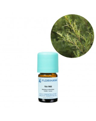 Tea Tree Essential Oil BIO (Melaleuca Alternifolia) - FLE055