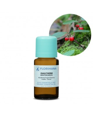Wintergreen Essential Oil BIO (Gaultheria Fragrantissima) - FLE138