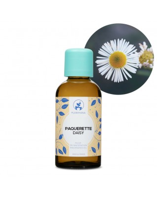 Daisy Macerated Oil (Bellis Perennis) - FLM008