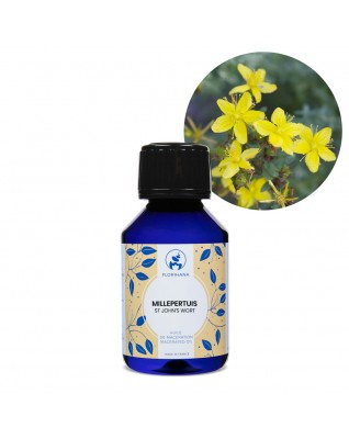 St John's Wort Macerated Oil (Hypericum Perforatum) - FLM004